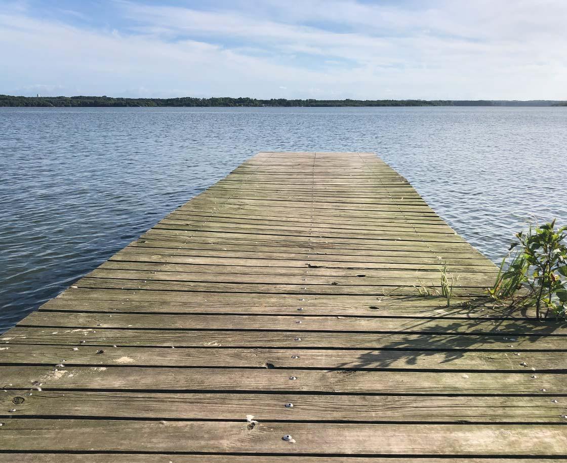 Pasarela de madera en un lago al sur de Francia